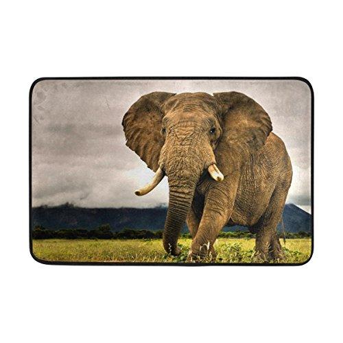 jstel Elefant-Fußmatte waschbar Garten Büro Fußmatte, Küche ESS-Living Badezimmer Pet Eintrag Teppiche mit Rutschfeste Unterseite 59,9x 39,9cm