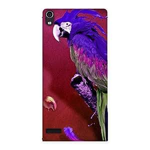 Magic Parrot Multicolor Back Case Cover for Ascend P6