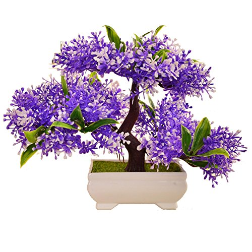 LWBAN-plant Plante Artificielle Bonsaï cèdre Artificiel en Pot, Arbre Artificiel/Bonsai déco, Hauteur 20 cm, 32