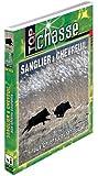 Sanglier et chevreuil aux chiens courants - Top Chasse - Chasse du grand gibier