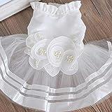 JullyeleFRgant Costume de Robe de Mariage pour Chien vêtements pour Chat Chiot Princesse Dentelle