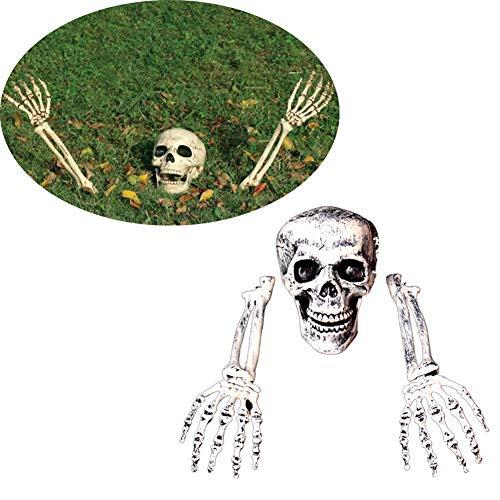 Realistische Skelett Knochen Schädel Kopf und Hände für beste Halloween-Party Dekoration und gruseligsten Friedhof Szene