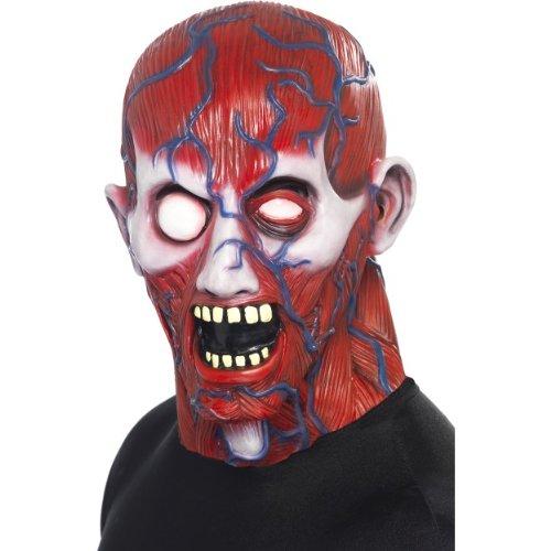 ke Anatomie Mann Horror zu Halloween (Anatomie Mann Kostüme)