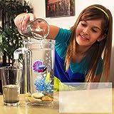 BeesClover Betta in plastica autopulente, per Acquario, scrivania, Decorazione per casa e Ufficio Style 2