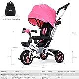 Fascol 4 in 1 Dreirad Klappbar Kinderwagen Tricycle für Kinder ab 6 Monate bis 5 Jahren, Kinderdreirad mit abnehmbarer Sonnendach Schubstange hergestellt von Fascol