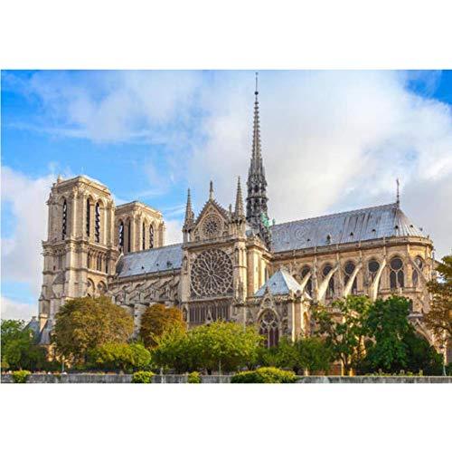 CYBAMBOO Diamant Malerei Bohren Voll Platz Landschaft Frankreich Paris Notre Dame DIY Diamant Malerei Kreuzstich Stickerei Wohnkultur 30 * 40cm (Kreuzstich-frankreich)