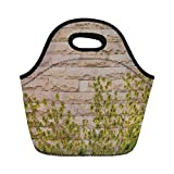 Jieaiuoo Portable Lunch Bag,Rustic Home Decor,Ground Creepy Climbing Wood Ivy Plant Leaf on Brick Wall Nature Invasion,Green White,for Kids Adult Thermal Insulated Tote Bags