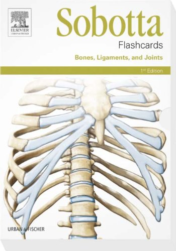 Sobotta Flashcards Bones, Ligaments, and Joints: Bones, Ligaments, and Joints Bd Knochen