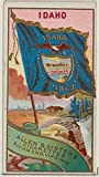 ' – Idaho from Flags of the States and Territories (N11) for Allen & Ginter Cigarettes Brands Kunstdruck (45,72 x 60,96 cm)