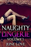 Naughty Lingerie: Volume 1:  A Sexy Photo Book of Erotic Photography (English Edition)