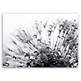 ge Bildet® hochwertiges Leinwandbild Pflanzen Bilder - Another World - schwarz weiß - Blumen Natur Pusteblume - 70 x 50 cm einteilig 2206 H