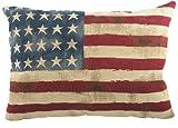 Homestreet Cushions Evans Lichfield Stars and Stripes Tapisseriekissen, 45,7 x 33 cm (18 x 13 Zoll), gefüllt mit Polyest