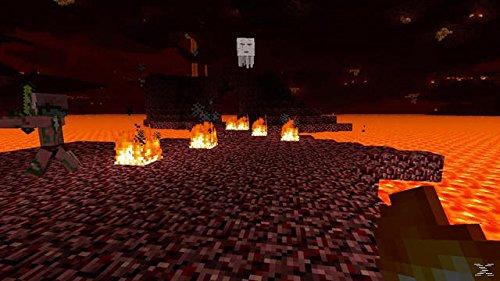 Minecraft - Bild 6