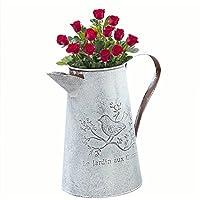 PROKTH Jarra de riego, jardinería en casa, decoración de flores de riego, lata de jardinería, botella de riego de flores vintage