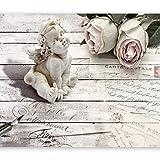 murando - Fototapete 250x175 cm - Vlies Tapete - Moderne Wanddeko - Design Tapete - Wandtapete - Wand Dekoration - Vintage Engel Rose Bretter f-A-0342-a-a