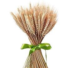 100x hierba seca ramo decoración Boda craft accesorios alta simulation-2ramo, flores artificiales, tallo, trigo, Sheaves, Natural flores secas para el hogar decoraciones de fiesta
