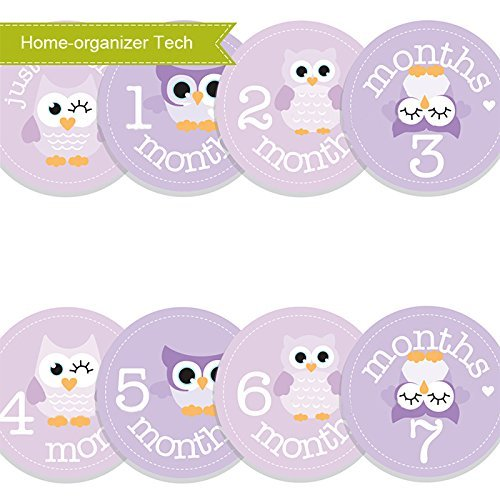Baby Month Stickers Cartoon Owl Boy Girl 1-12 Monthly Milestone Sticker Best Birthday Shower Gift Party Photo Age Sticker by Home-organizer Tech (Beste Onsies)