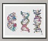 DNA molecule acuarela impresión médica pared arte regalo de enfermera Medical arte ciencia arte decoración de dormitorio regalo para médico laboratorio biology-849, M, multicolor, 33.10 x 46.80