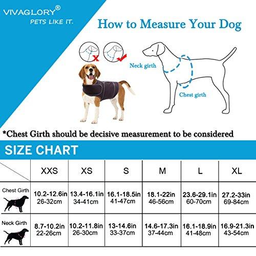 Vivaglory Angst T-Shirt mit Stressabbau und Anti-Angst-Effekt für Hunde, verstellbar, Größe M, Blau - 6