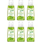 Zuci Green Apple Hand Sanitizer Pack Of 6
