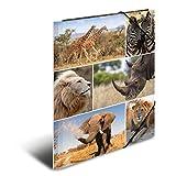 Herma 19214 Sammelmappe DIN A4 Karton, Motiv Afrika, Serie Tiere, Eckspanner, 1 Zeichenmappe, auch für Kinder