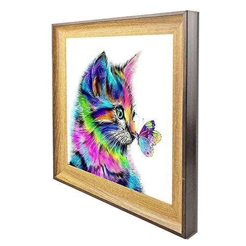5D DIY Diamant Peinture Chat, Avec Cadre en Point de Croix en Résine Décoration de Maison Salon Chambre - Chat et Papillon Multicolore Mignon (25.3cm x 25.3cm, frames cat)
