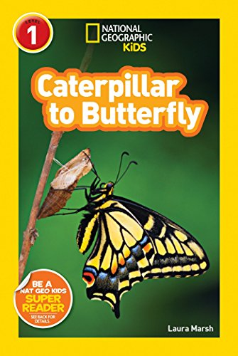 National Geographic Kids Caterpillar To Butterfly (National Geographic Kids Readers: Level 1)