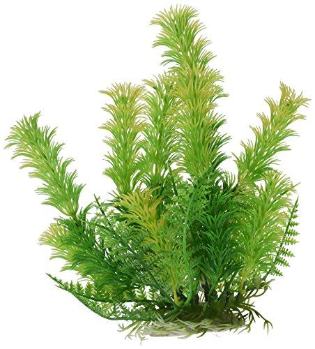 Guppys Aquarium Für Pflanzen (Sourcingmap grün 18cm hoch Aqua Landschaft Fish Tank Kunststoff Pflanze für Betta,)