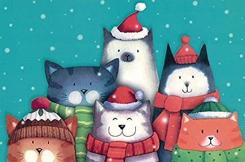 Weihnachtskarten–Festive Katzen–15x 9,9cm–Pack von 8–42787 (Katze Weihnachtskarten)