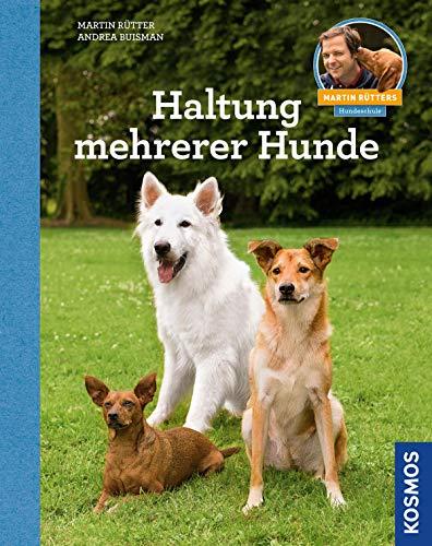 Haltung mehrerer Hunde -