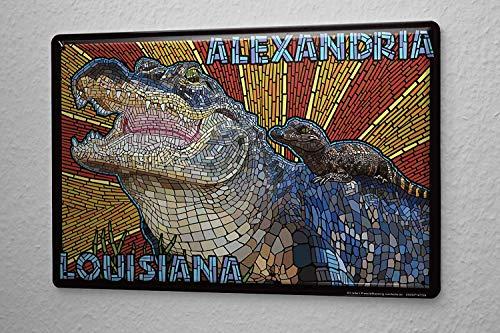 HGNGHN Tin Sign Wanderlust City Alexandria Louisiana