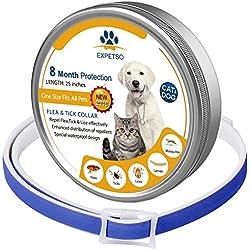 Expetso 2018 - Collar de pulgas y garrapatas para Perros y Gatos (8 Meses, protección Ajustable, 60 cm de Largo, para Mascotas pequeñas, Medianas y Grandes), Color Azul
