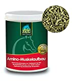 Lexa Amino-Muskelaufbau 1 kg
