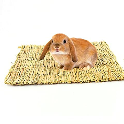Natural Handwoven Edible Grass Small Pet Bed Mat for Bunny Mouse and Dwarf Hamster Non-Toxic Chew Toy Bed (16 x 10.63 Inches)