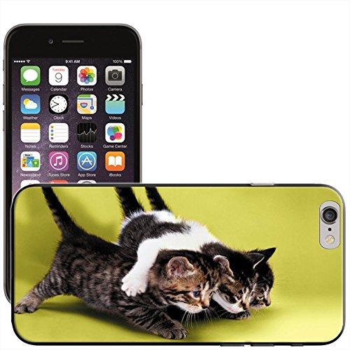 Fancy A Snuggle 'Süßer schwarz Katze bereit für Weihnachten Wearing Santa Hat' Hard Case Clip On Back Cover für Apple iPhone 5C Kittens Ready To Pounce
