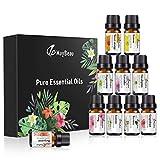 Set Premium dei migliori 6 oli essenziali per aromaterapia (10ml), Pacchetto di campioni con olio 100% terapeutico di lusso (include lavanda, pianta del tè, eucalipto, franchincenso, cannella, menta)