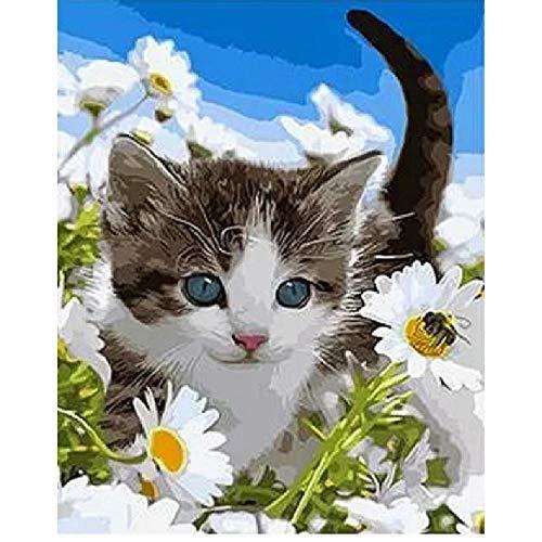 CCEEBDTO MalenNachZahlen Kits Mit DIY Acrylmalerei Für Kinder Und Erwachsene Anfänger Wildflower Cat Animal Erwachsene Anfänger Acryl Kits Auf Leinwand 40X50Cm Rahmenlos -