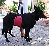 Cutepet Hundegeschirr Tragehilfe Rehabilitation Hunde Geschirr Mit Griff Für Hunde Verletzungen Für Mittlere Und Große Hunde FZ-02683,Red,M