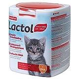Beaphar Lactol, Latte maternisé di Sostituzione per Gattini