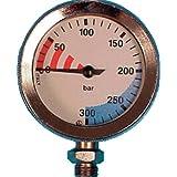 Trident Trident Submersible BAR Pressure Gauge