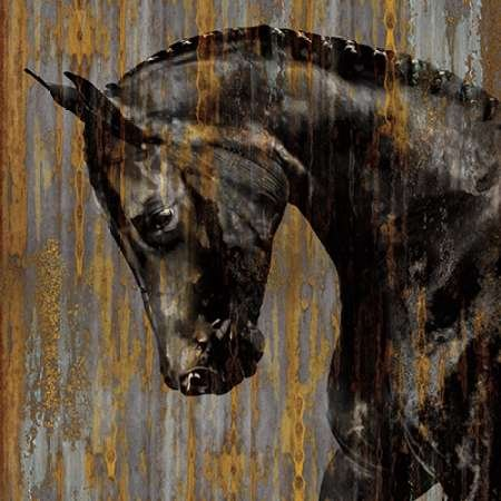cheval-i-par-rose-martin-fine-art-print-disponible-sur-papier-et-toile-papier-medium-45-x-45-inches-