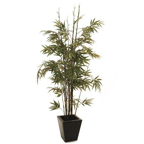 Europalms 152 cm Arbre en bambou avec coffre noir, vert