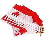 Fengge Hand Waving Canada Drapeaux nationaux canadiens Poteaux en plastique (paquet de 12)