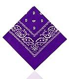 Paisley Bandanas by Lizzy® (Purple)