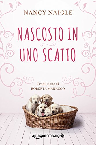 Nascosto in uno scatto (Adams Grove Vol. 2)