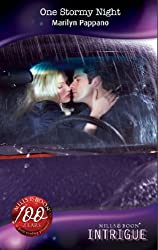 One Stormy Night (Mills & Boon Intrigue)