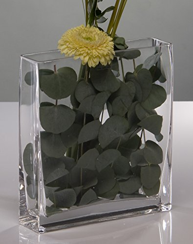 Sandra Rich Glasvase Rectangular klar eckig 15 cm Ø 20,0 x 5,0 cm