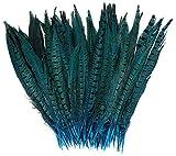 ERGEOB Federn, Fasan federn, 25-30cm/ 10-12 Zoll Länge Fasan Schwanzfedern blau 20 stück