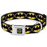 Buckle Down BMC Batman schwarz/gelb Hund Halsband