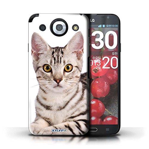 Kobalt® Imprimé Etui / Coque pour LG Optimus G Pro / Abyssinien conception / Série Espèces de chats American Shorthair